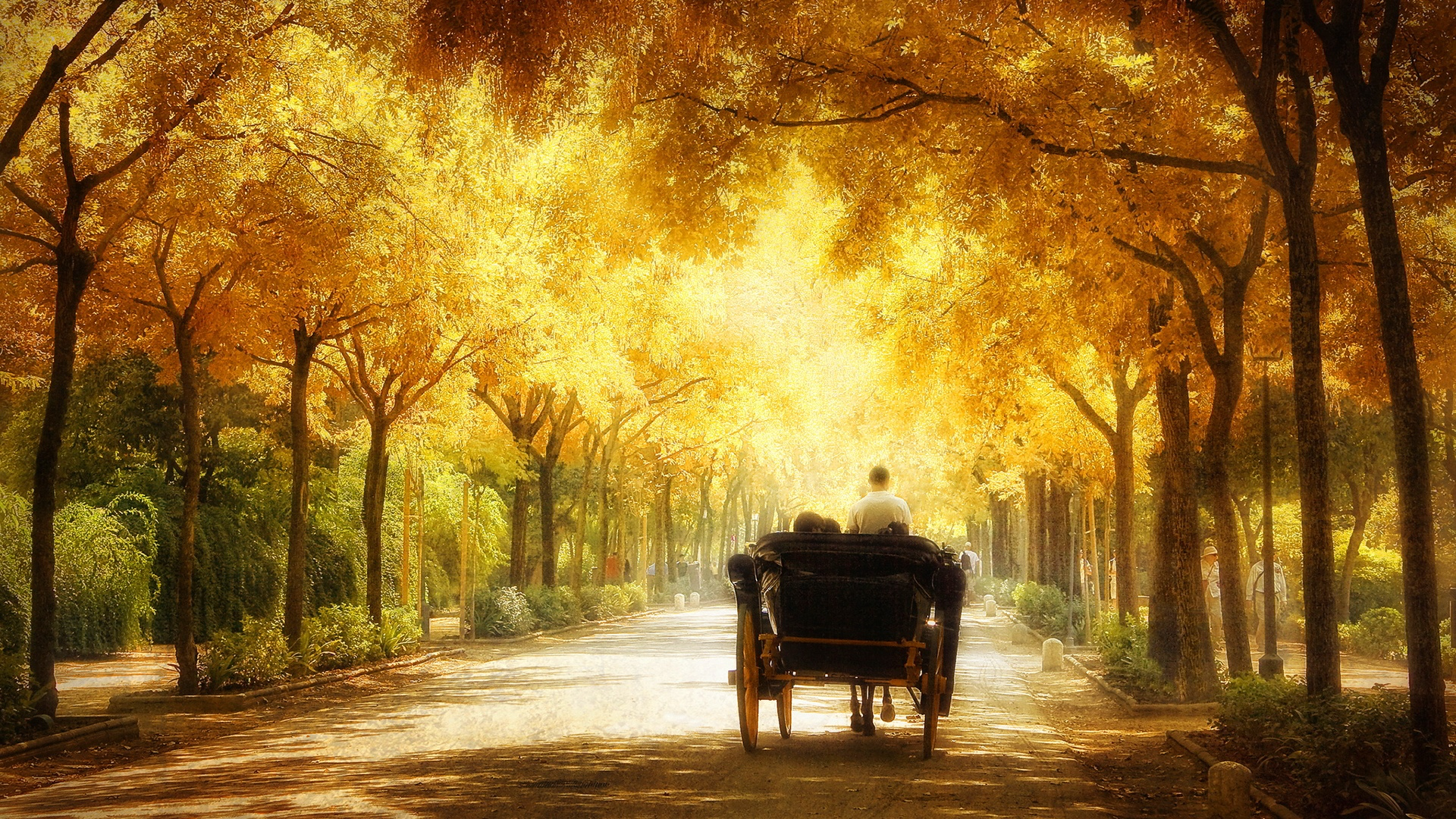 http://www.alcovadeldoge.com/wp-content/uploads/2016/04/romantic-carriage-ride-1920x1080.jpg